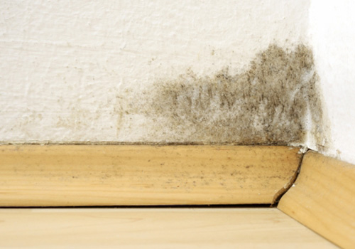 Condensation treatment and prevention in Bishop Auckland and County Durham
